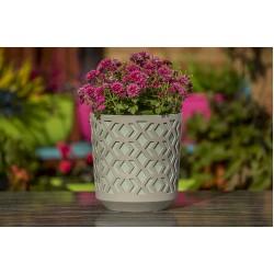 Plant Pots Aztek White+Mint