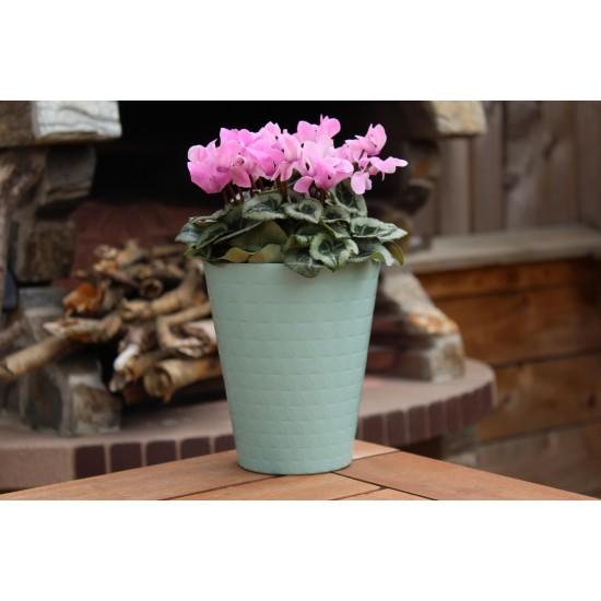Plant Pots Diamond Orchid  Mint