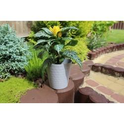 Plant Pots Diamond Grey