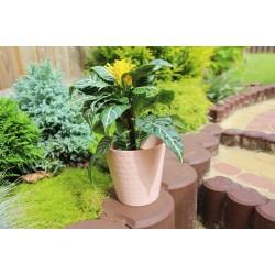 Plant Pots Diamond Powder Pink