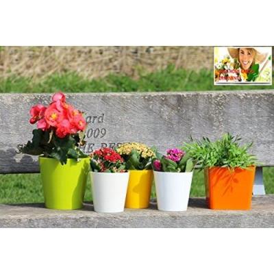 Aga Flower Pots