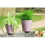 Heather Aga Flower Pot