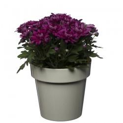 Flower Pots Classic Ecru