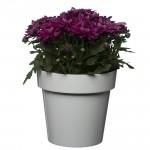 Flower Pots classic White