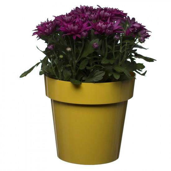 Flower Pots Classic Yellow