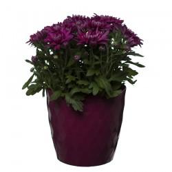 Pink Crystal Flower Pot