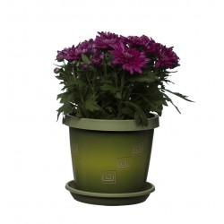 Set of 3 Olive Tree Keramo Flower Pot