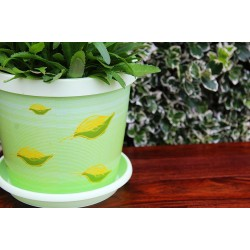 Set of 3 Pistachio  Keramo Flower Pot