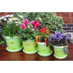 Pistachio Keramo Flower Pot