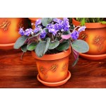 Terracotta flower Keramo Flower Pot