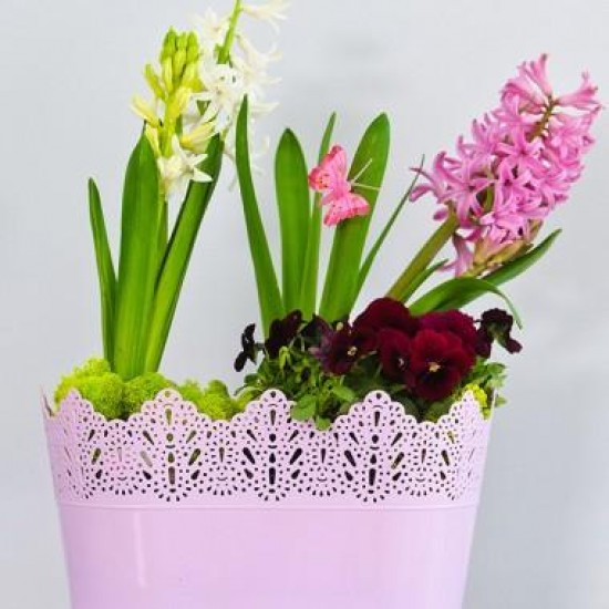 Flower Pots Oval CROWN-Pink