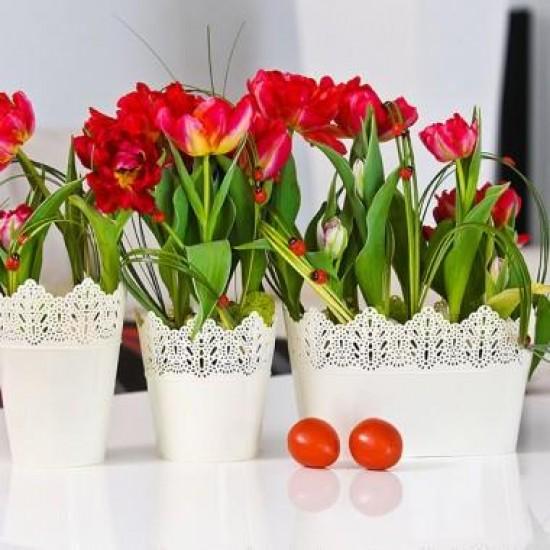 Flower Pots Oval CROWN-Ecru