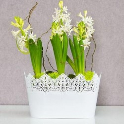 Flower Pots Oval CROWN-White