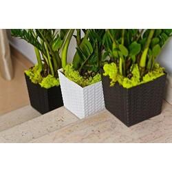 Flower Pots Rattan Imitation
