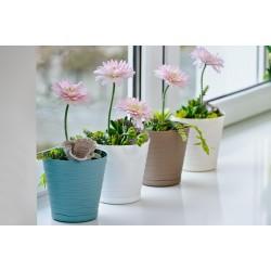 Flower Pots Tedi White