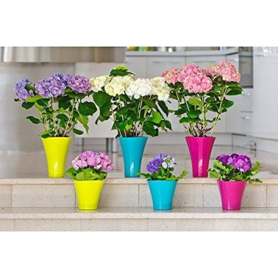 Wave 2 Flower Pots