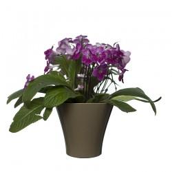 Flower Pots Wave 1-Beige