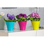 Flower Pots Wave 1-Turquoise