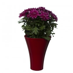 Flower Pots Wave 2-Red