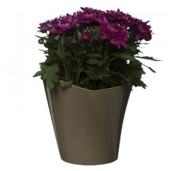 Flower Pots Twister Beige