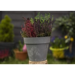 Plant Pots Ibiza Dark Grey+ Concrete