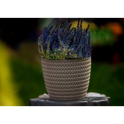 Plant Pots Jersey Taupe