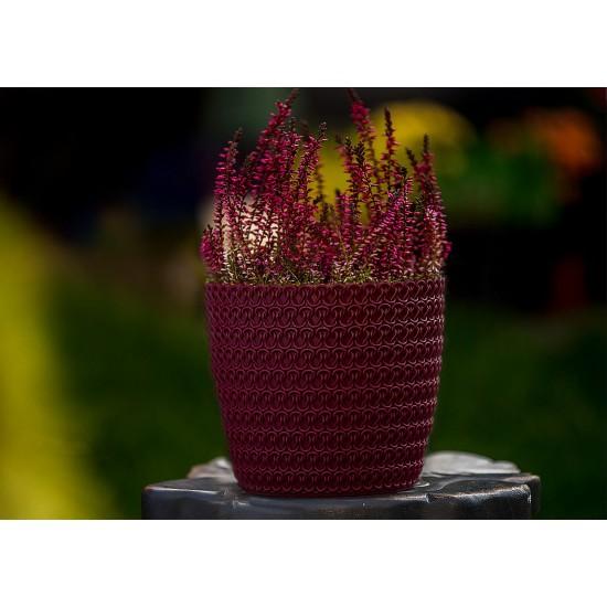 Plant Pots Jersey Burgundy