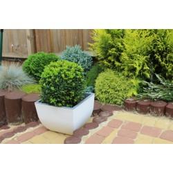 Muna Plant Pots Square white + concrete