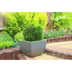 Muna Plant Pots Square concrete+green