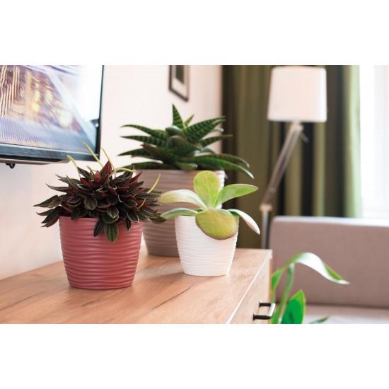 Plant Pots Sahara Marsala