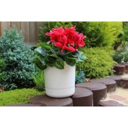 Satina Plant Pots White