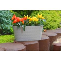 Plant Pots Diamond Oval Grey