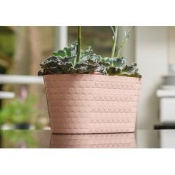 Plant Pots Diamond Oval Powder Pink