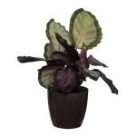 Brown Marble Flower Pot
